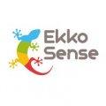 EkkoSense